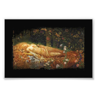 Sleeping Beauty and a Harp Photo Print