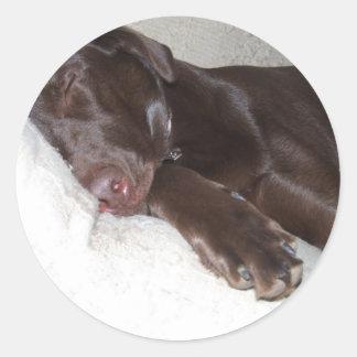 Sleeping Beauty Classic Round Sticker