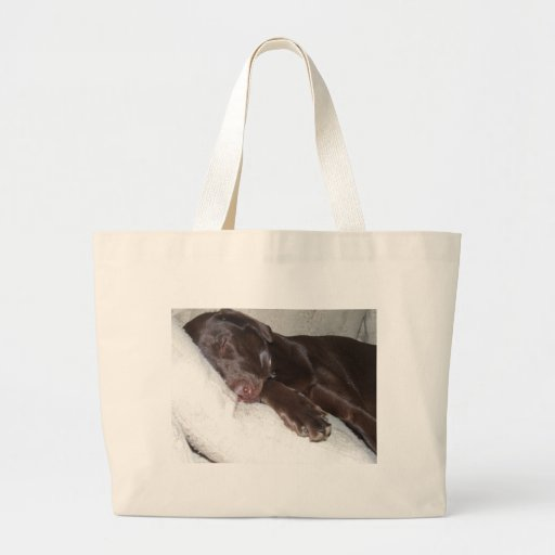 Sleeping Beauty Jumbo Tote Bag