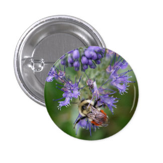 Sleeping Bee on a Blue Flower Button