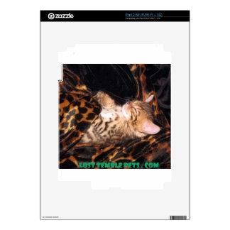 sleeping bengal kitten skin for the iPad 2