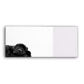 Sleeping Black Puppy Envelopes