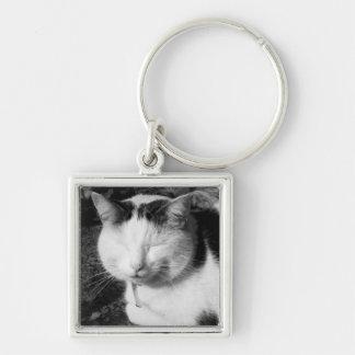 Sleeping Black & White Cat Keychain
