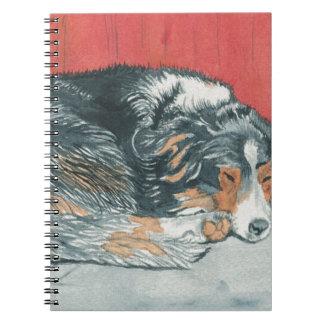 Sleeping Border Collie Notebook
