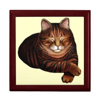 Sleeping Brown Tabby Cat Gift Box
