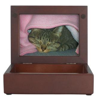 Sleeping Bud Memory Box