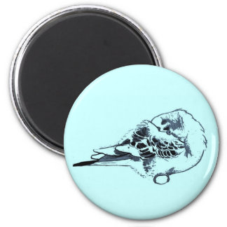 Sleeping Budgie Drawing 2 Inch Round Magnet