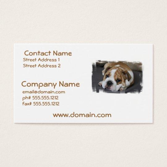 Sleeping Bulldog Business Cards