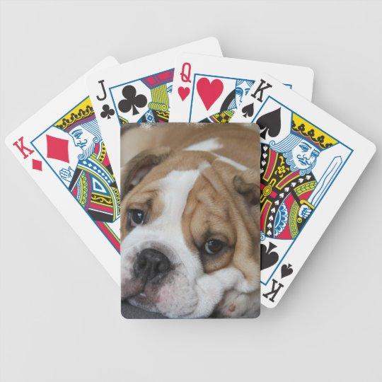 Sleeping Bulldog Deck of Cards
