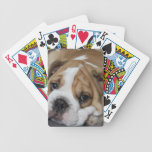 Sleeping Bulldog Deck of Cards Bicycle Playing Cards