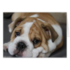 Sleeping Bulldog Greeting Card