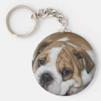 Sleeping Bulldog Keychain