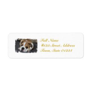 Sleeping Bulldog Mailing Labels