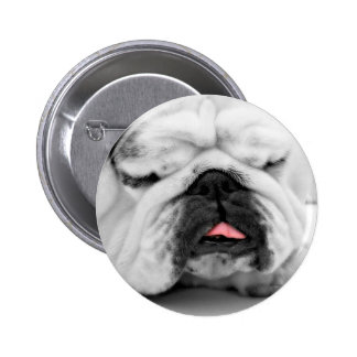 Sleeping Bulldog Puppy Dog Lovers Photo Design Pinback Buttons