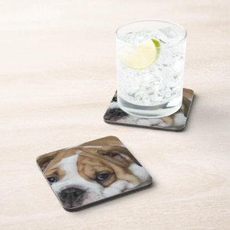 Sleeping Bulldog Set of Six Coasters