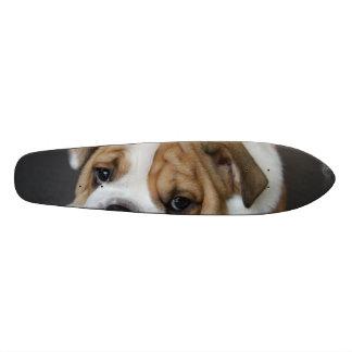 Sleeping Bulldog Skate Deck