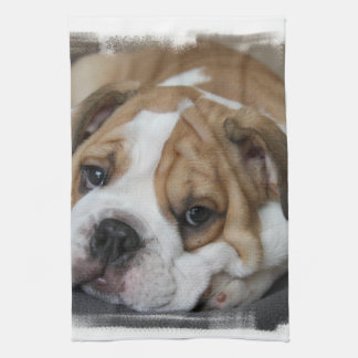 Sleeping Bulldog Towel