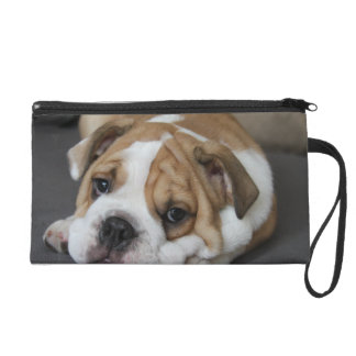 Sleeping Bulldog Wristlet