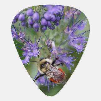 Sleeping Bumble Bee Guitar Pick