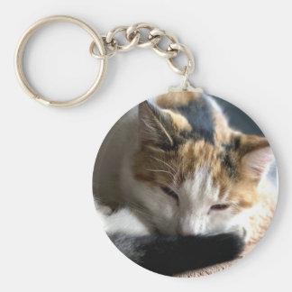 Sleeping Calico Cat Keychain