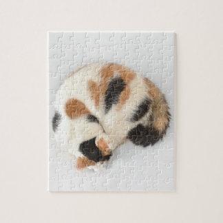 Sleeping Calico Cat Photo Puzzle and Gift Box