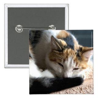 Sleeping Calico Pinback Button