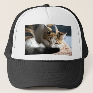 Sleeping Calico Trucker Hat