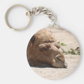Sleeping Camel Key Chain