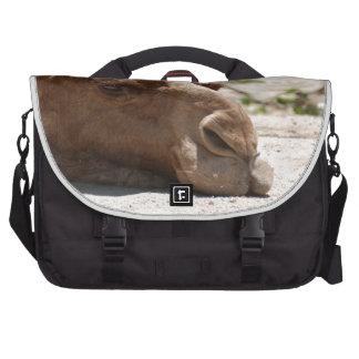 Sleeping Camel Laptop Commuter Bag