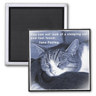 Sleeping cat 2 inch square magnet