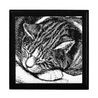 Sleeping Cat Drawing Jewelry Box