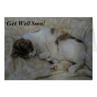 Sleeping Cat Get Well Soon Card #2