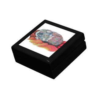 Sleeping Cat Gift Box