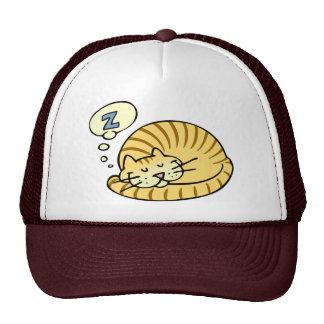 Sleeping Cat Hat