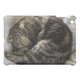 Sleeping cat case for the iPad mini