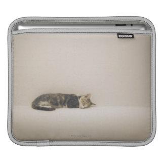 Sleeping cat iPad sleeve