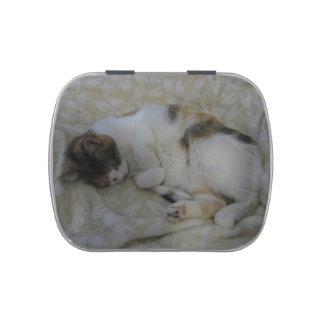 Sleeping Cat Jelly Belly Tin
