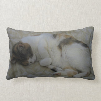Sleeping Cat Lumbar Pillow