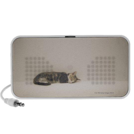Sleeping cat mini speaker
