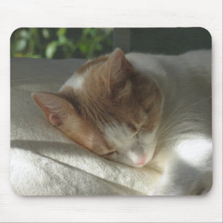 Sleeping Cat Mouse Pads