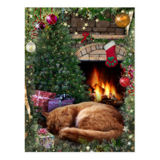 Sleeping Cat next to the Fireplace at Christmas Postcard
