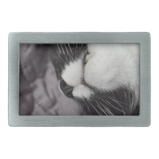 sleeping cat nose upside down kitty belt buckle