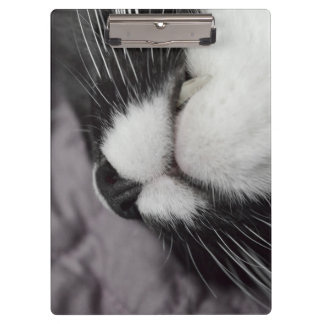 sleeping cat nose upside down kitty clipboard