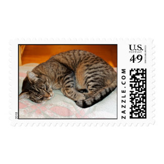 Sleeping Cat On A Fuzzy Blanket Postage Stamp