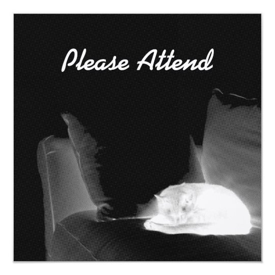 Sleeping Cat On Sofa - B&W Negative Card