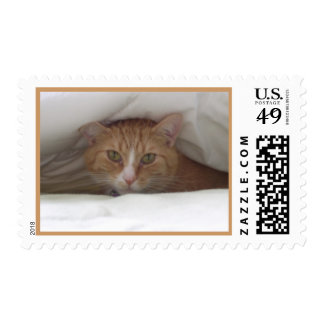 Sleeping Cat Postage