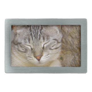 Sleeping cat rectangular belt buckle