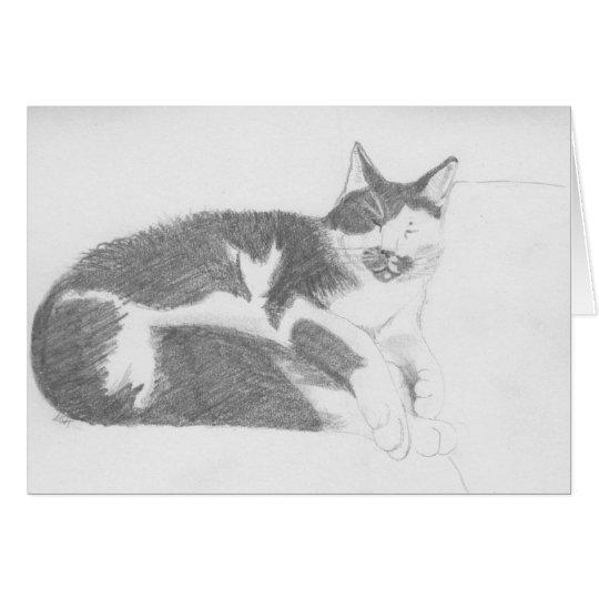 Sleeping cat sketch card