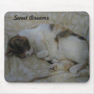 Sleeping Cat-Sweet Dreams
