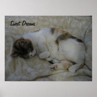 Sleeping Cat-Sweet Dreams Posters